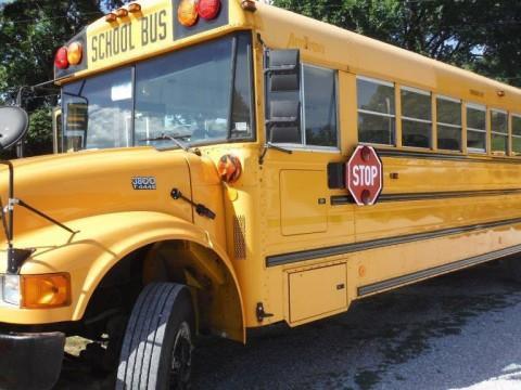 2001 International School Bus for sale
